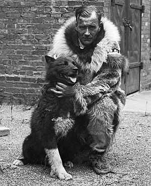 Gunnar Kaasen - Gunnar Kaasen with his pet huskey, Balto