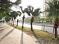 HK 沙田北 Shatin North 石門 Shek Mun 大涌橋路 Tai Chung Kiu Road February 2019 SSG 07.jpg