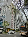 HK 油麻地 Yau Ma Tei 窩打老道 Waterloo Road Chinese YMCA Kln Centre facade Jan-2014 tree n KMBus 271.JPG