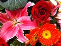 HK Central flowers City Hall art expo Red daisy n Roses n pink lily Nov-2012.JPG
