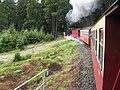 HSB Zug im Wald - geo-en.hlipp.de - 13702.jpg