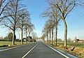 Hamm, Germany - panoramio (5283).jpg