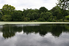 Hampstead heath wikipedia for Hampstead heath park swimming pool