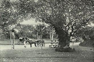 Malabar Hill - Image: Hanging Gardens Malabar Hill