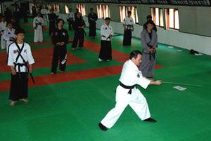 Hankumdo - Image: Hankumdo Mestre Ko Ju Sik