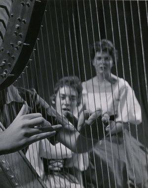 Pedal harp - Harpist performing