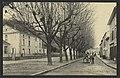 Hauterives (Drôme). - Avenue de St-Vallier (33726517444).jpg