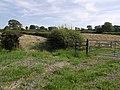 Hay fields beside the A3072 - geograph.org.uk - 533987.jpg