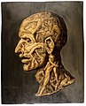 Head of a man, composed of nude figures. Oil painting. Wellcome V0017125.jpg