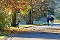 Herbst im Park - Blätter, Bäume, Seeufer und Wege im Wandel der Jahreszeiten. (15).jpg
