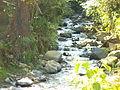 Hermosa quebrada y llena de agua pura en zona rural de Buga.JPG