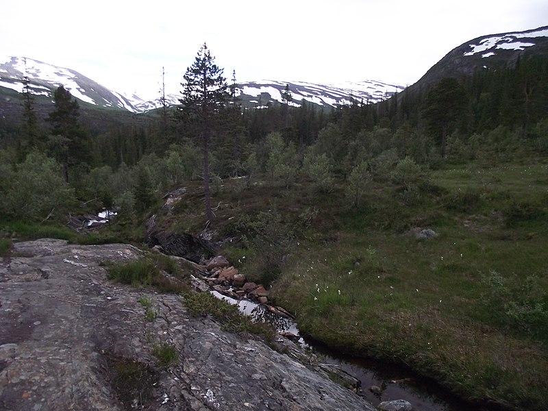 File:Hestmyrskogan - panoramio (1).jpg