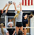 High school volleyball 2584 (9560561569).jpg