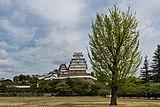 Himeji Castle with tree.jpg
