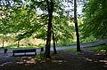 Holosiivskyi Park, Kyiv 0001 07.JPG