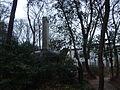 Hong Lou Park - Blank stele bixi, seen behind the trees - P1060599.JPG