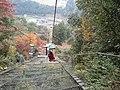 Honyabakeimachi Atoda, Nakatsu, Oita Prefecture 871-0311, Japan - panoramio (10).jpg