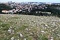 Hradiště Dívčí hrady (3).jpg
