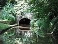 Hydebanktunnel.jpg
