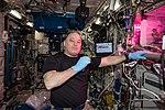 ISS-55 Scott Tingle eats lettuce inside the Columbus module.jpg