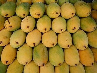 Zambales - Mangoes from Zambales
