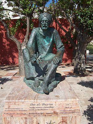 Ibn al-Baitar - Statue of Ibn al-Bayṭār in Benalmádena Costa, Spain