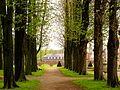 Im Schlosspark..jpg