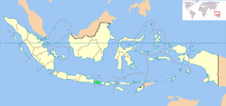 Location of Bali in Indonesia (shown in green)