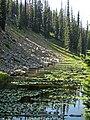 Isa Lake (Craig Pass, Yellowstone, Wyoming, USA) 9 (44217907972).jpg