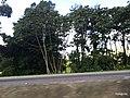 Itapema - SC - panoramio (5).jpg