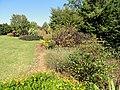 J. C. Raulston Arboretum - DSC06151.JPG