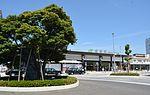 JR Narita station and Big tree 2016,Narita city,Japan.jpg