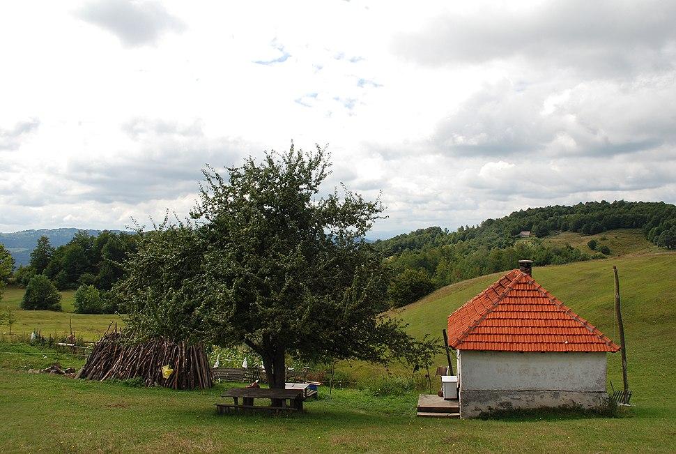Jablanik - zapadna Srbija - mesto Debelo brdo - Kuća na planini 1
