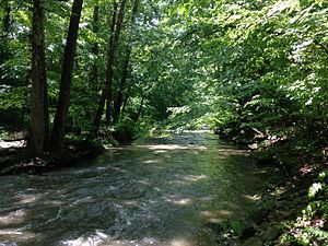 Jackson Creek (Monroe County, Indiana) - Jackson Creek, south of Rock Creek Drive in Bloomington, Indiana USA May 30, 2015
