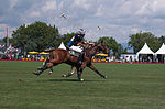 Jaeger-LeCoultre Polo Masters 2013 - 31082013 - Match Legacy vs Jaeger-LeCoultre Veytay for the third place 25.jpg