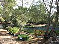 Jardín medicinal ecoherbes.jpg