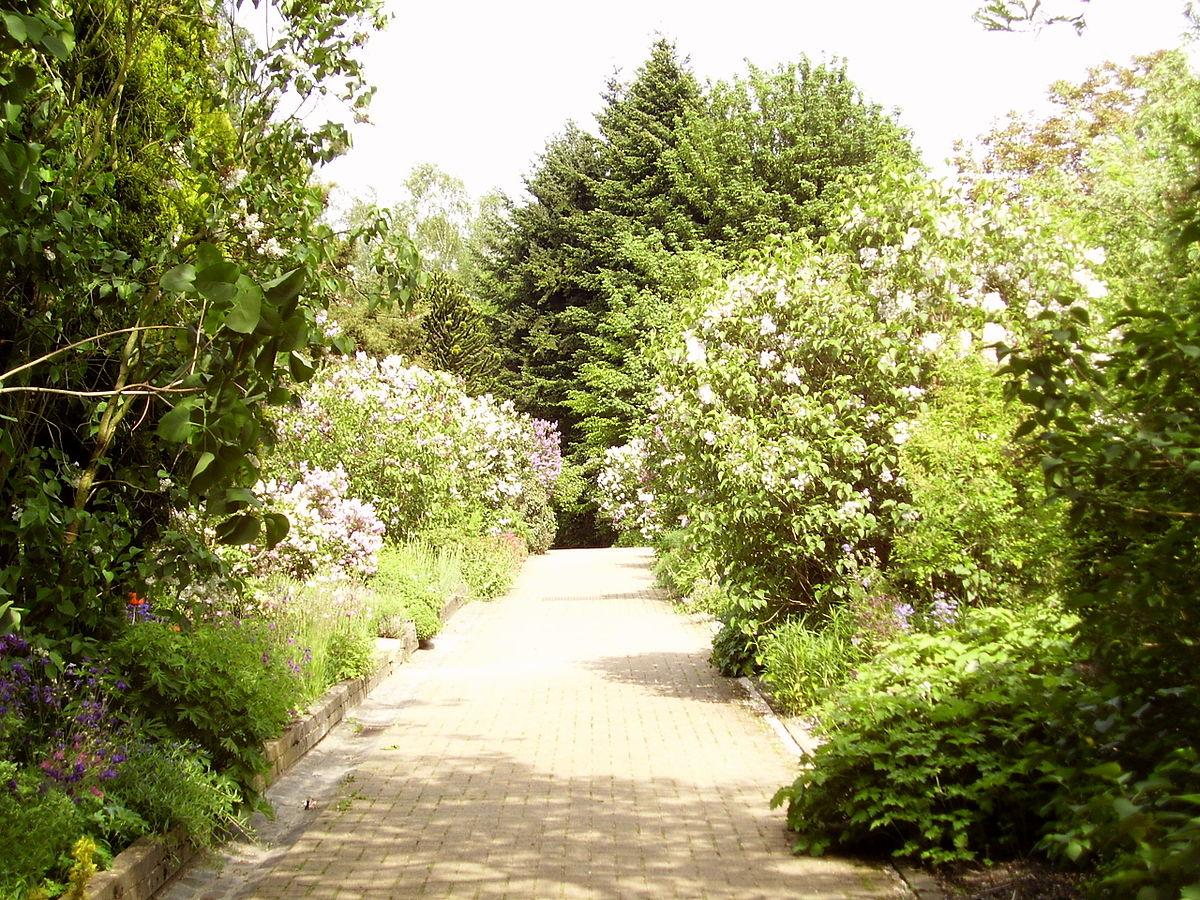 Jardin botanique jean massart wikip dia for Jardin wikipedia