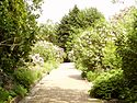 Jardin Massart 01.JPG