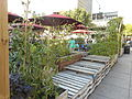 Jardins Gamelin 22.jpg
