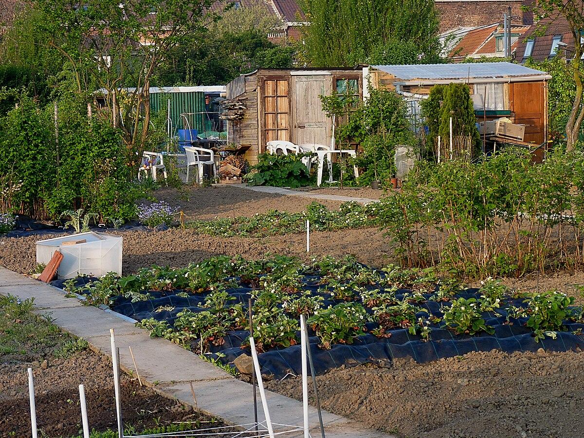 jardin ouvrier wiktionnaire
