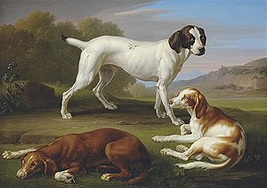 Gun dog - Painting of a Pointer and two Setters by Johann Wenzel Peter circa 1829