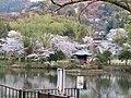 Jokoji Park in spring.jpg