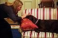 Joni Mitchell pets Buddy in the oval office.jpg