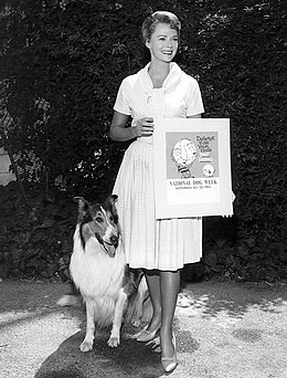 June Lockhart Lassie National Dog Week 1963.JPG