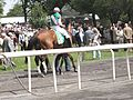 Just a Game Stakes horse 5 07.jpg