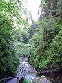 Kakouetta gorges 2, 2007.JPG