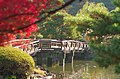 Kami-no-ike(upper pond), Shinjuku Gyoen(Shinjuku Imperial Garden) - 上の池, 新宿御苑 - panoramio.jpg