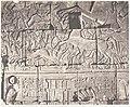 Karnak (Thèbes), Enciente du Palais - Détails de Sculptures au Point O MET DP138582.jpg