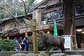 Kasuganocho, Nara, Nara Prefecture 630-8212, Japan - panoramio - jetsun (24).jpg