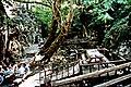 Kazdağı 07 2004 Ayazma 03.jpg